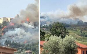 Incendio Rende Paese, Innova: serve maggiore prevenzione e pulizia del territorio