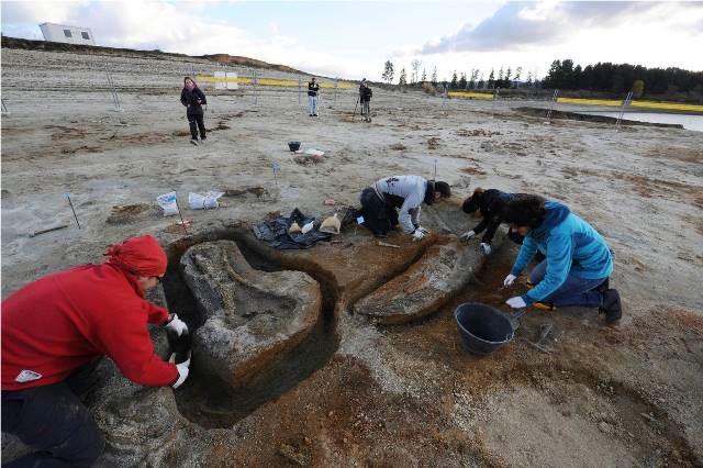 L'elefante fossile di Cecita: una vergogna calabrese