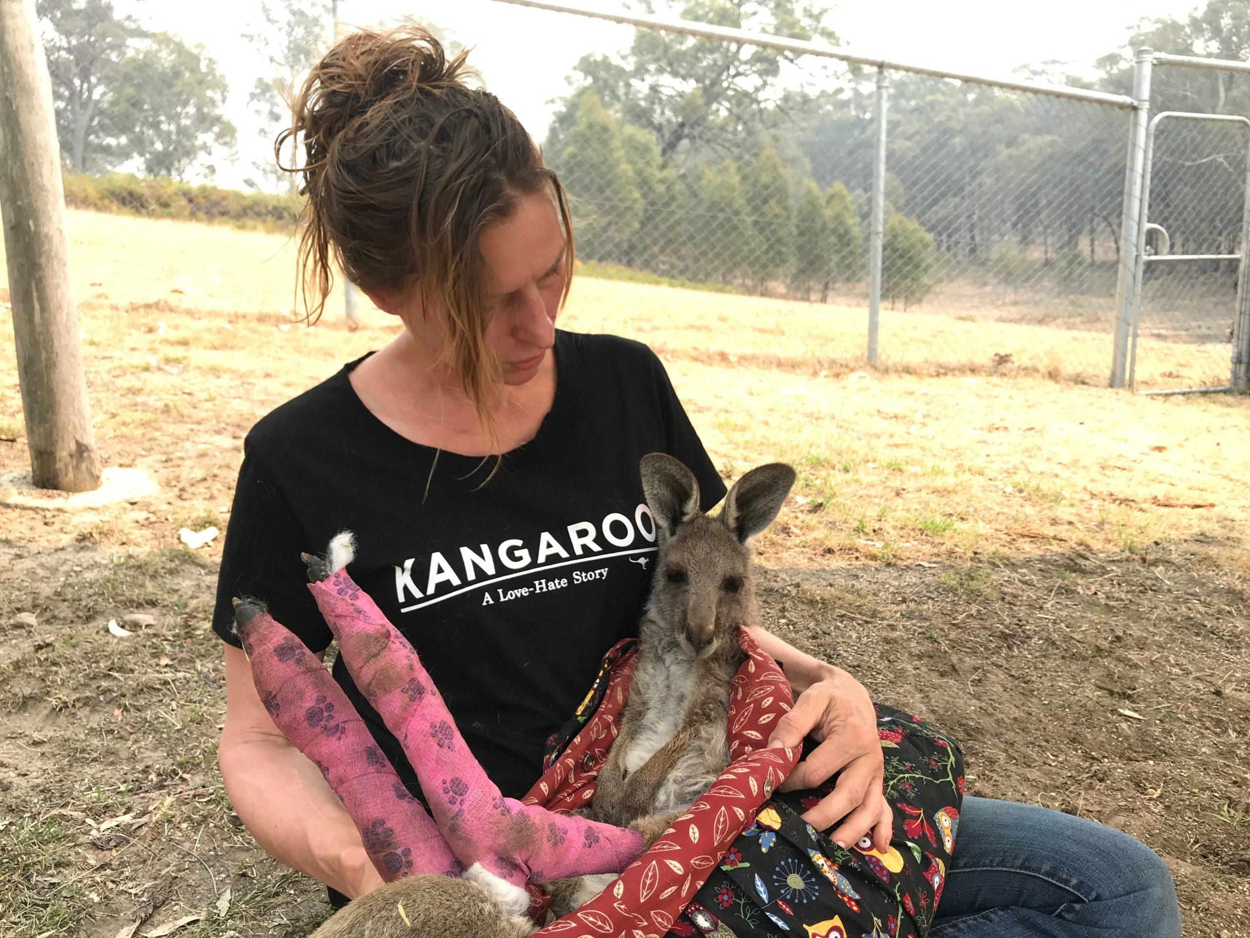 Gli incendi in Australia hanno causato la morte di mezzo miliardo di animali, e nessuno ne parla