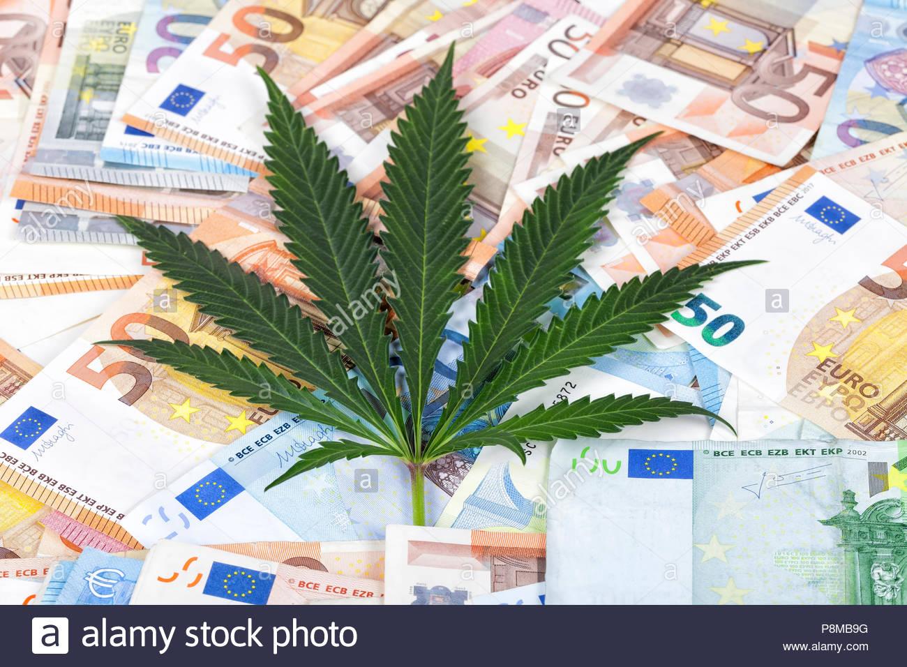 Legalizzare la Cannabis per risollevare le sorti dell'economia italiana?
