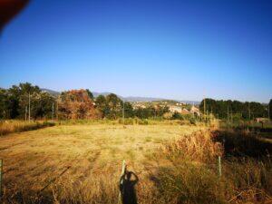 Intervista a Luigi Cosentini sul degrado e abbandono dell'ex Azzurra
