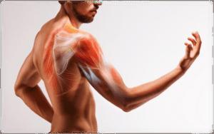 Spalla nel Nuotatore: Discinesia Scapolo-toracica e trattamento