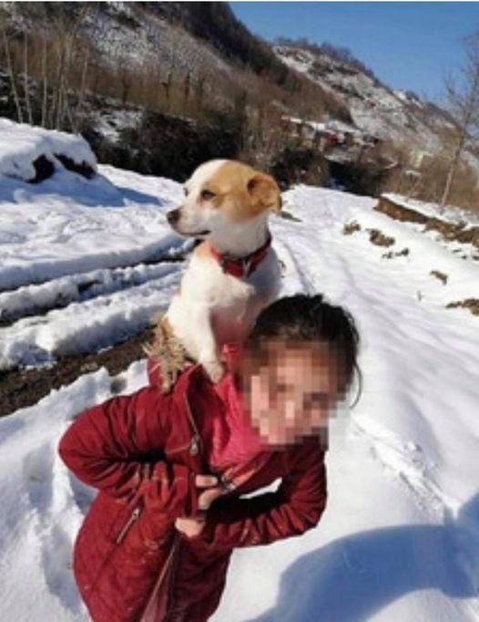La bella storia di Cemre e del suo cane Pamuk