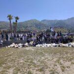 Paola. I volontari di Plastic Free ripuliscono la spiaggia