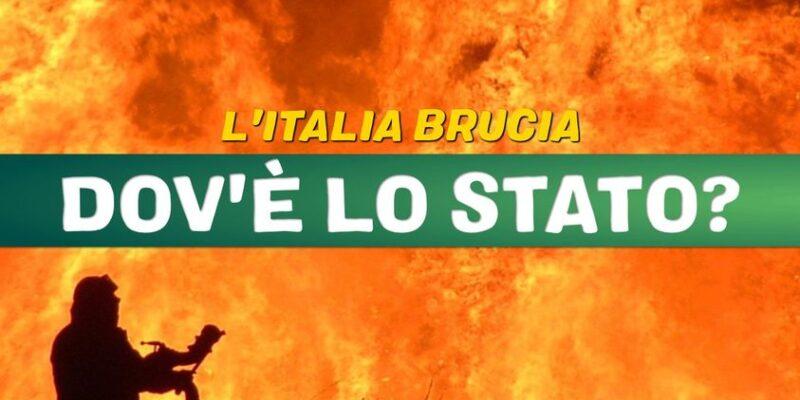 Europa Verde: 80 mila ettari di boschi in fumo. Dov'è lo Stato?