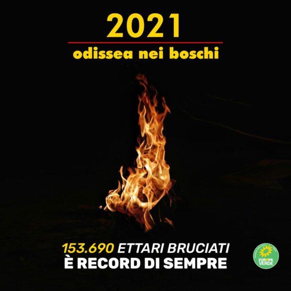 """Europa Verde: """"Odissea dei boschi, si rischia la desertificazione del Sud Italia"""""""